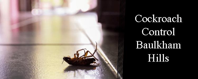 Cockroach Control Baulkham Hills